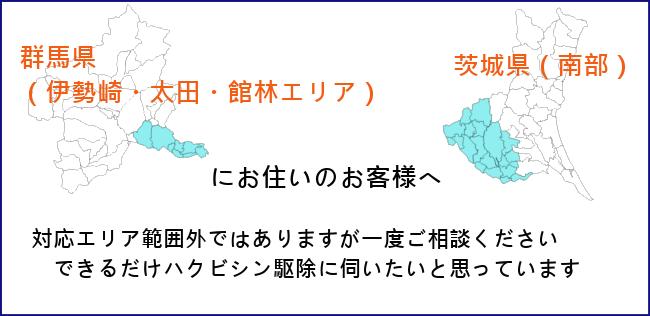 群馬県 (伊勢崎・太田・館林エリア)&茨城県南部にお住いのお客様へ。できる限り駆除に伺いますので、ぜひ一度ご相談ください。