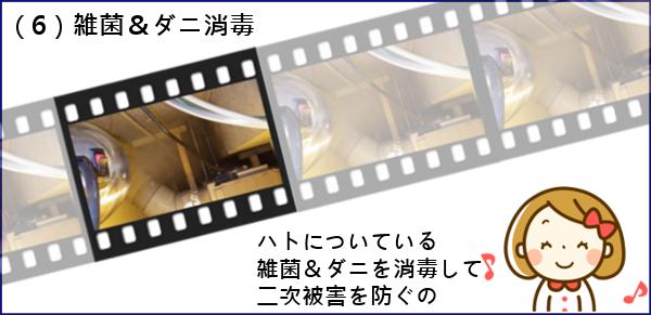 (6)ダニ・雑菌消毒